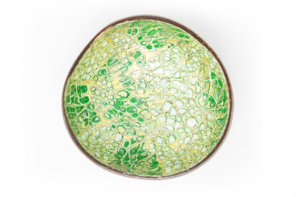 Tropical Garden Coconut Bowl topView web