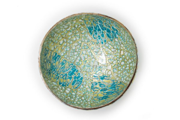 Turquoise Dreams coconut Bowl top view web